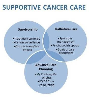 palliative care clinical experience Specialist palliative care providers (eg, consultant palliative care physicians or nurse specialists) delivery of care may be via hospice, day centres, hospital or community teams or telephone advice services.
